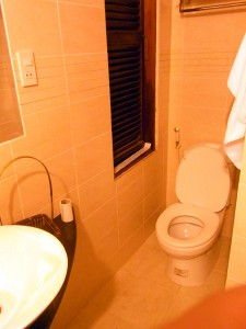 トイレは水洗