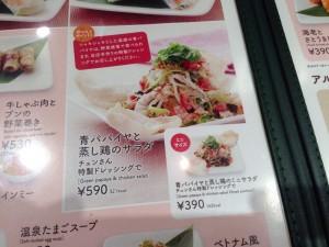 青パパイヤと蒸し鶏のサラダ